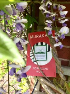 Book Review from The Book Fairies: Norwegian Wood Murakami