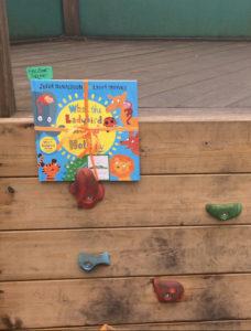 the book fairies childrens books