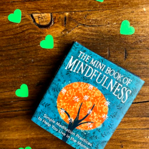 Mini Mindfulness Book for sale