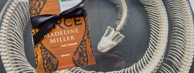 circe hidden by book fairies
