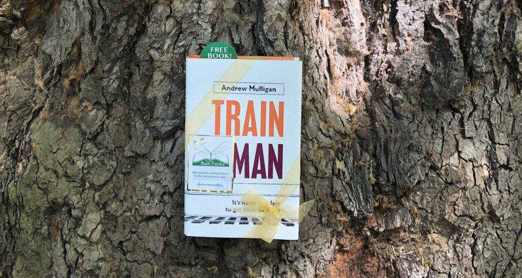 hardback novel train man is hidden in a tree by the book fairies