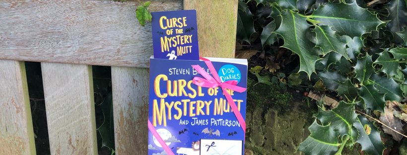 childrens books hidden by book fairies - the curse of the mystery mutt