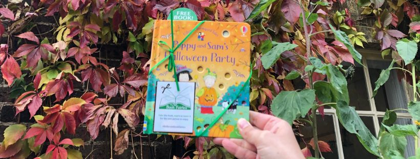 the book fairies hide poppy and sam books