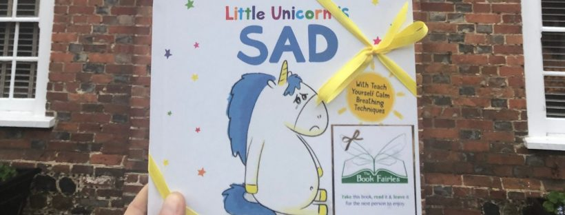 The Book Fairies hid copies of Little Unicorn childrens books