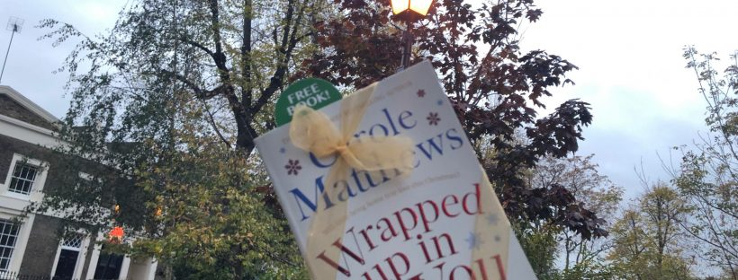 book fairies hide wrapped up in you book by carol matthews around the uk