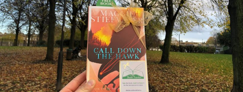 The Book Fairies hid young adult book Call Down The Hawk by Maggie Stiefvater