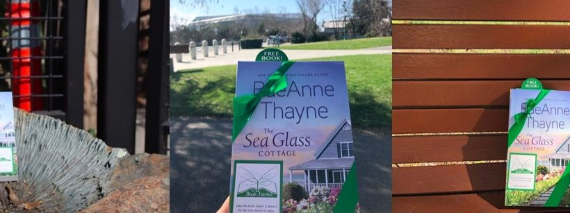 novel hidden in california by the book fairies