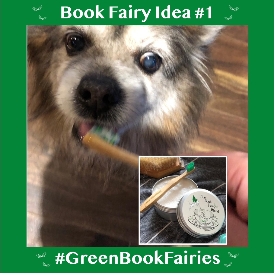 Green Book Fairies introduce homemade pet toothpaste in an effort to go plastic free
