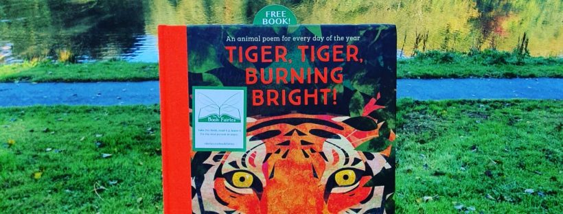 the book fairies hid copies of tiger tiger poetry book around the uk