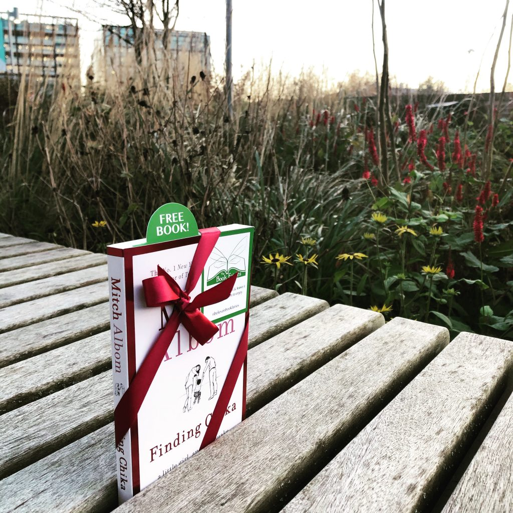 hiding on a bench - Book Fairies hide copies of Mitch Albom novel Finding Chika