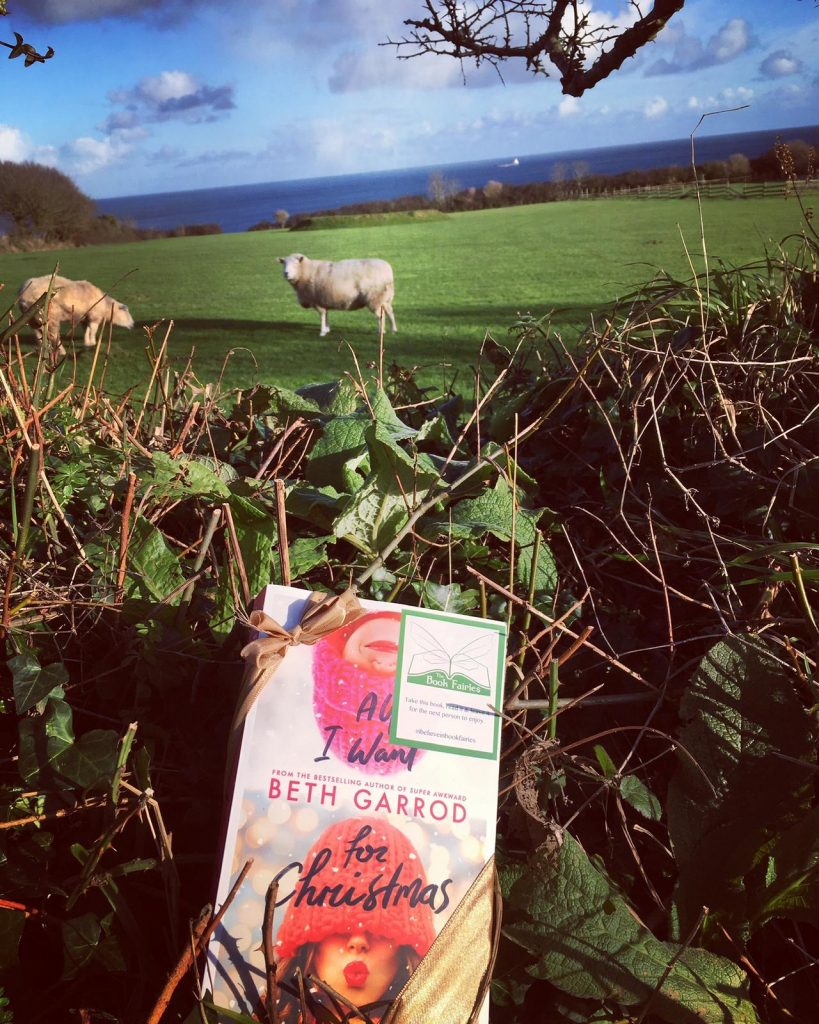 A book hides in a Cornwall hedge - the book fairies hid copies of All I Want for Christmas by Beth Garrod