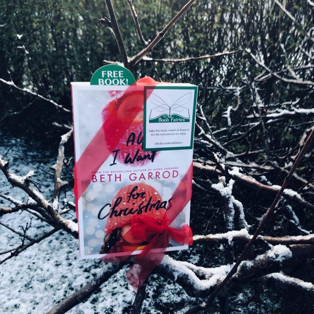 a book waits in a tree for a lucky finder - the book fairies hid copies of All I Want for Christmas by Beth Garrod