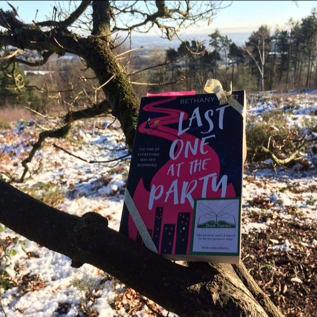 Book Fairies in Worcestershire hide Last One at the Party by Bethany Klift