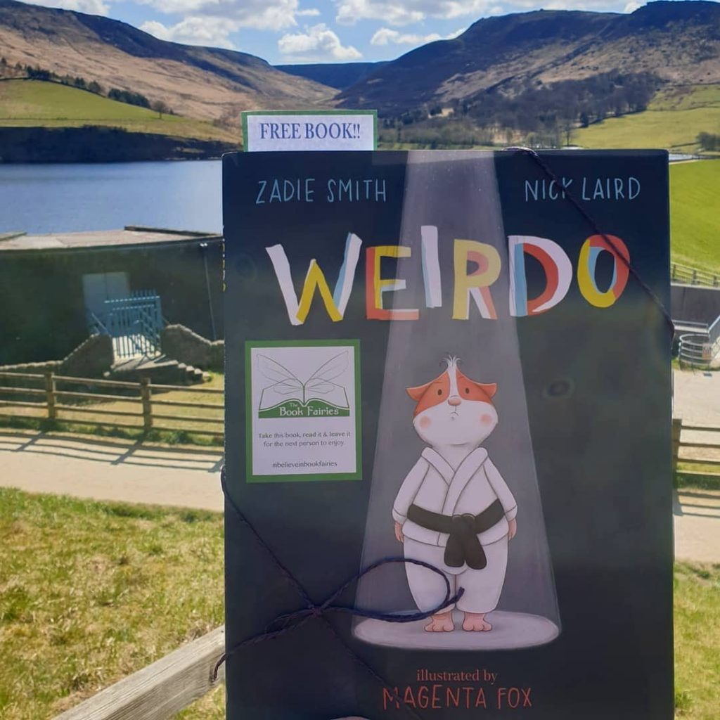 In the sunshine! Book fairies hide Zadie Smith's first children's book Weirdo around the UK