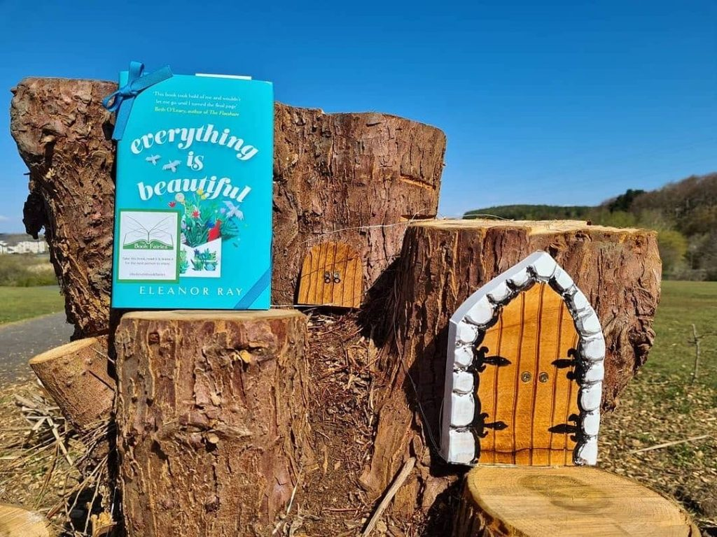 In Scotland - Book Fairies hide copies of Everything is Beautiful by Eleanor Ray