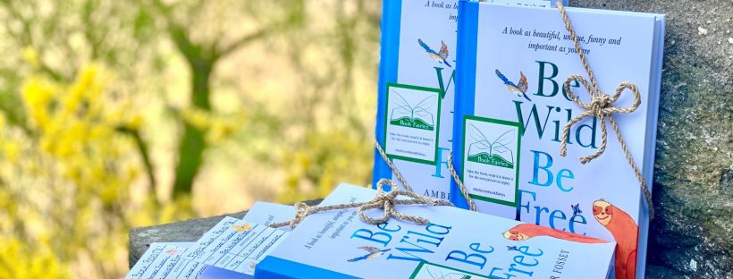 Beautifully wrapped books - Book fairies around the states hide Be Wild Be Free by Amber Fossey