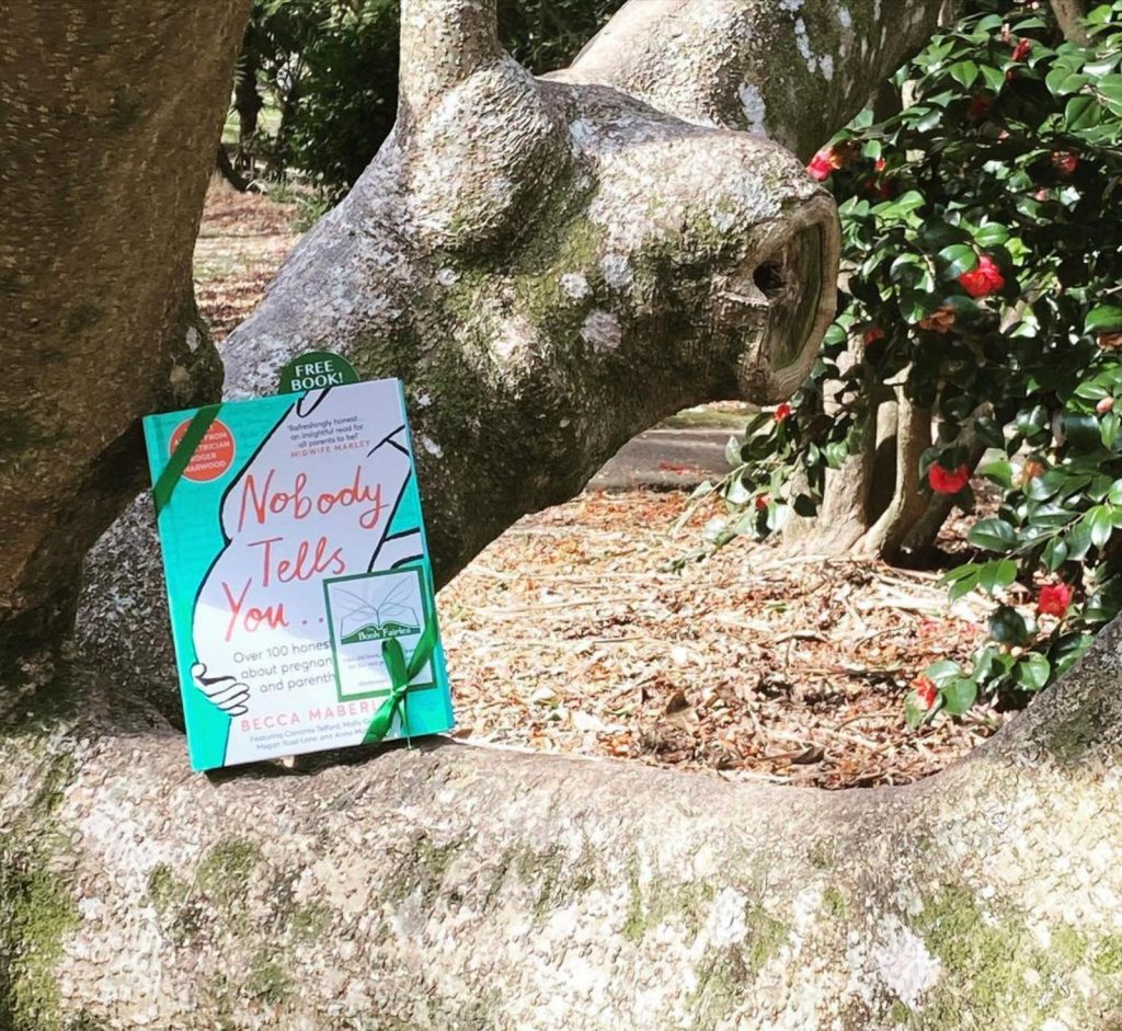 Hiding in Cornwall - Book Fairies hide new book Nobody Tells You by Becca Maberly