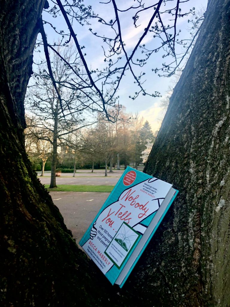 Hidden in the tree in Oxford - Book Fairies hide new book Nobody Tells You by Becca Maberly