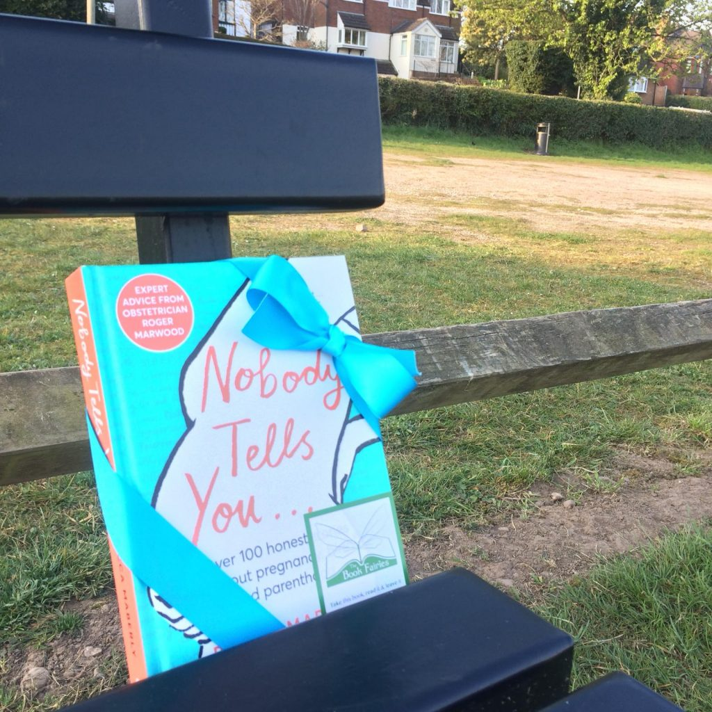 Hiding in Oxford - Book Fairies hide new book Nobody Tells You by Becca Maberly