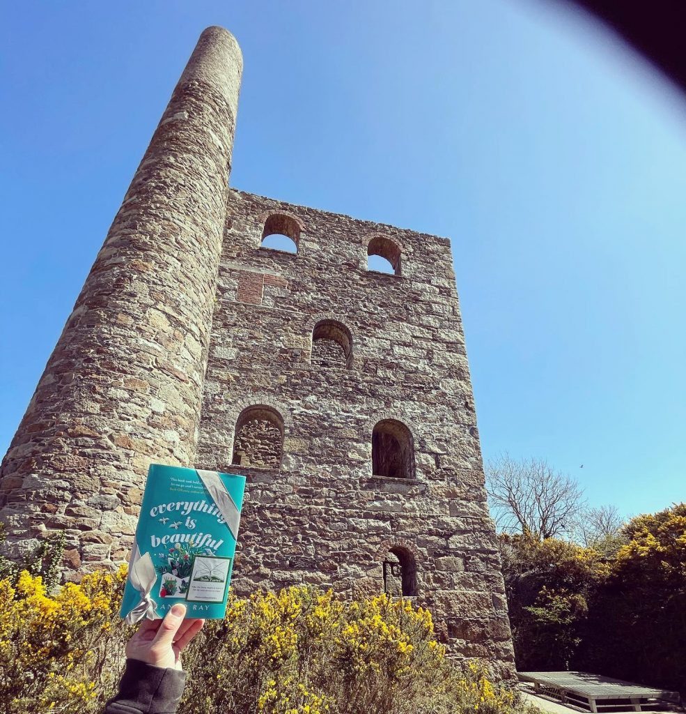 In Cornwall - Book Fairies hide copies of Everything is Beautiful by Eleanor Ray