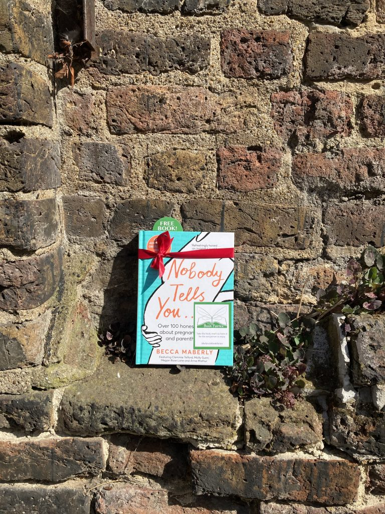 Hiding on a wall Book Fairies hide new book Nobody Tells You by Becca Maberly