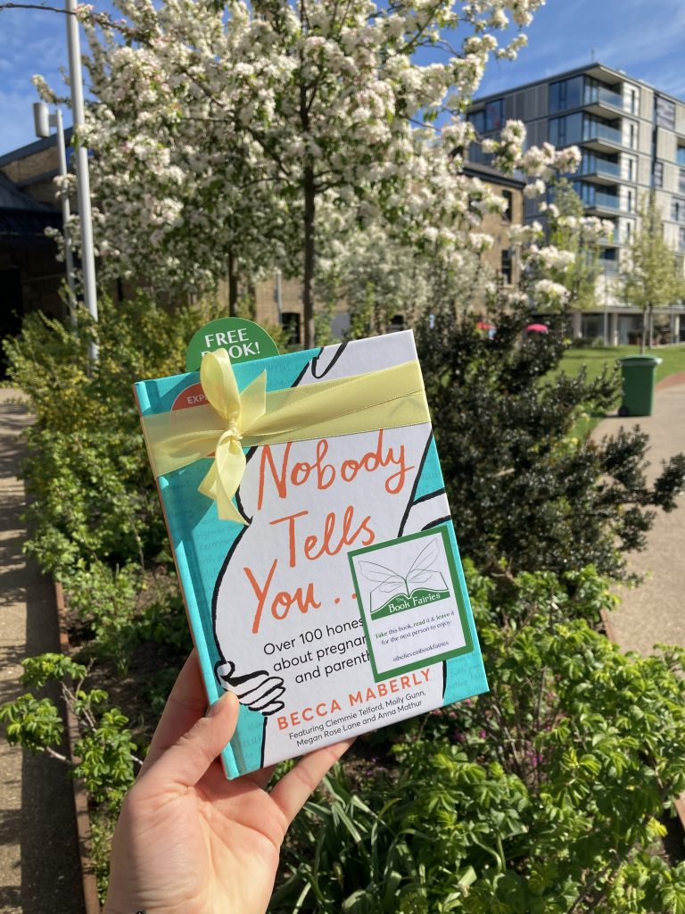 By the blossom - Book Fairies hide new book Nobody Tells You by Becca Maberly