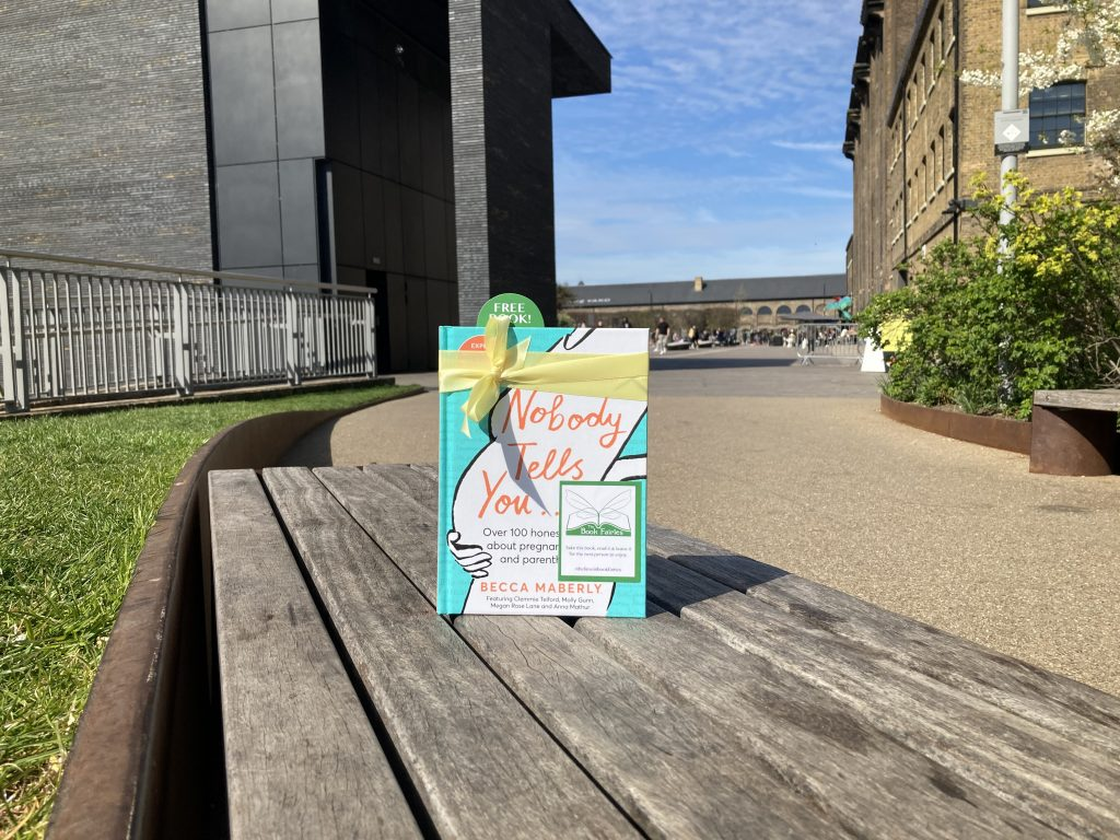 in King's Cross London - Book Fairies hide new book Nobody Tells You by Becca Maberly