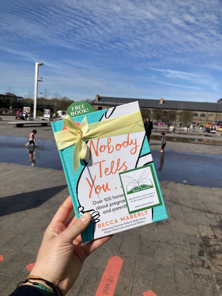 One for families - Book Fairies hide new book Nobody Tells You by Becca Maberly