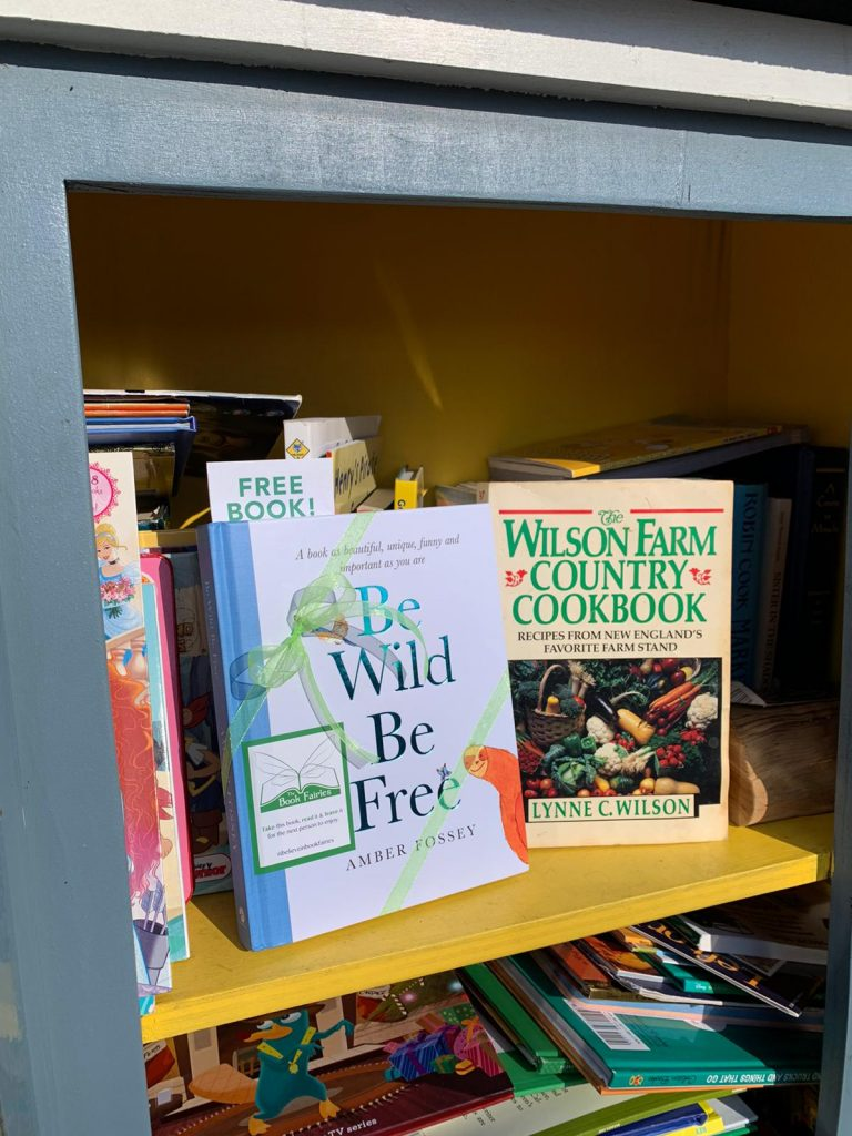 At a little library - Book fairies around the states hide Be Wild Be Free by Amber Fossey