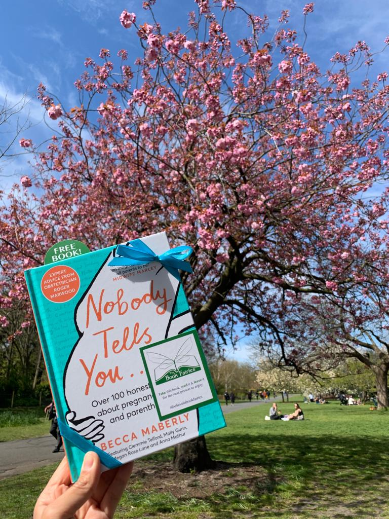 Beautiful blossom tree - Book Fairies hide new book Nobody Tells You by Becca Maberly