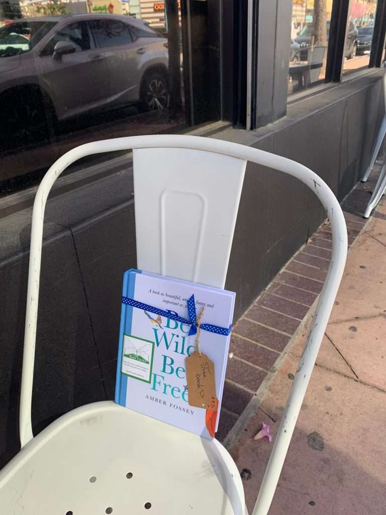 Outside a cafe - Book fairies around the states hide Be Wild Be Free by Amber Fossey