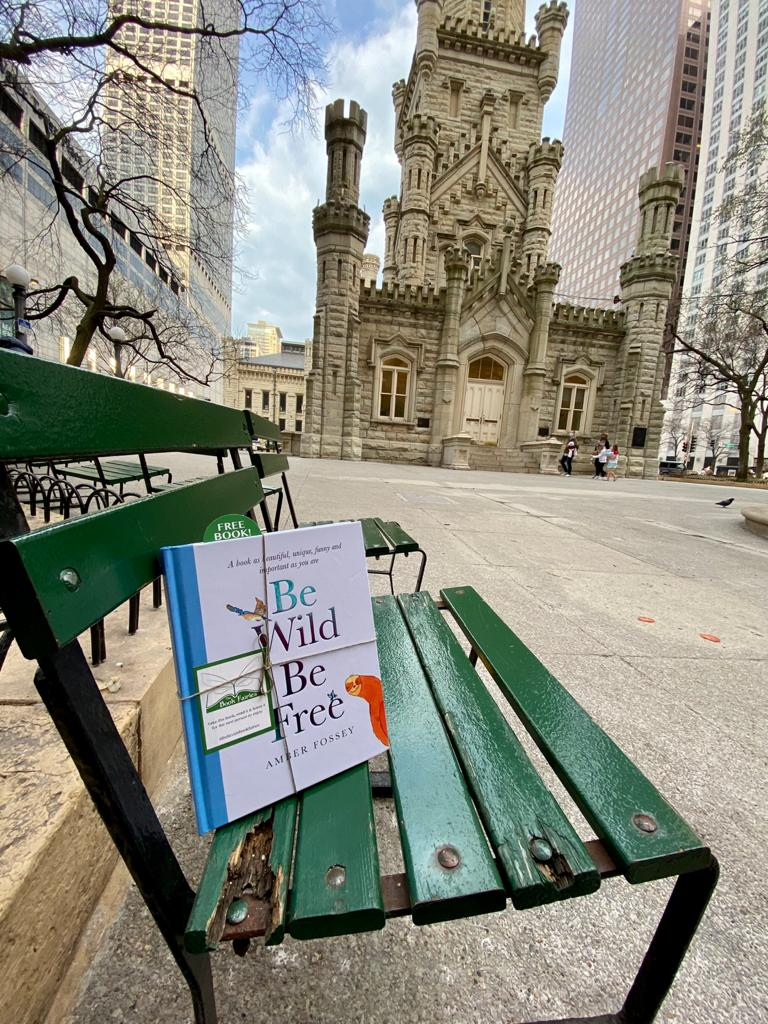 In Chicago Illinois - Book fairies around the states hide Be Wild Be Free by Amber Fossey