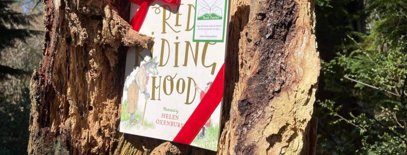 Hiding in a tree - Book Fairies hide copies of Red Riding Hood by Beatrix Potter and Helen Oxenbury