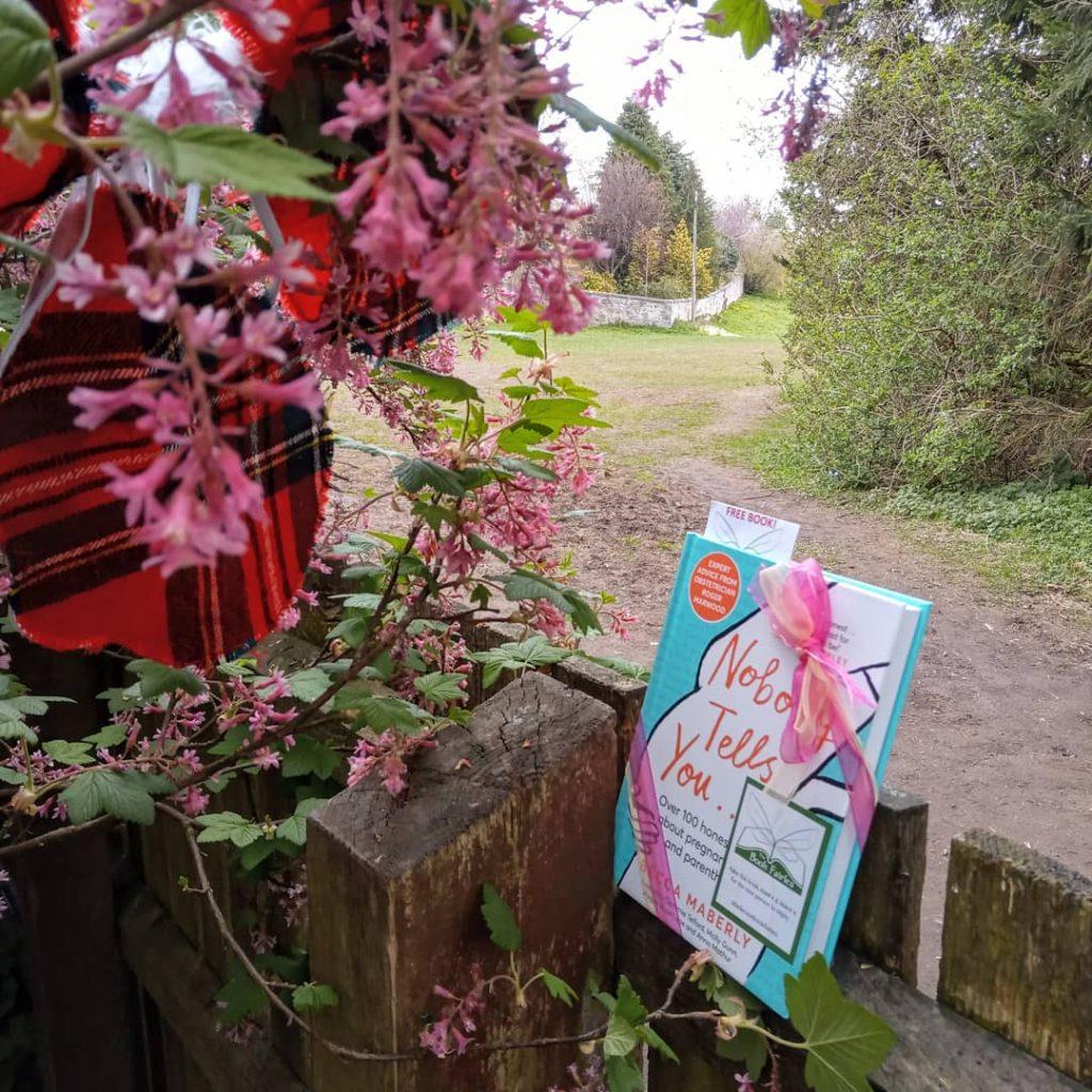 Hiding in Edinburgh - Book Fairies hide new book Nobody Tells You by Becca Maberly