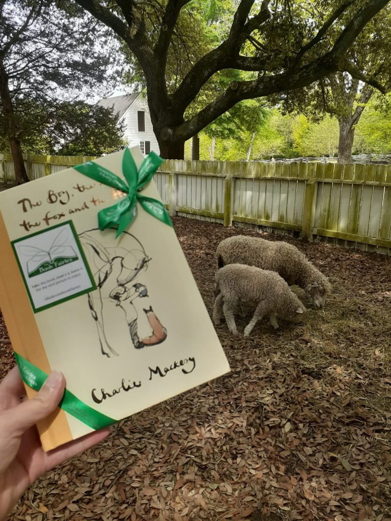 Beside some sheep! Book Fairies hide copies Charlie Mackesy The Boy The Mole The Fox and The Horse