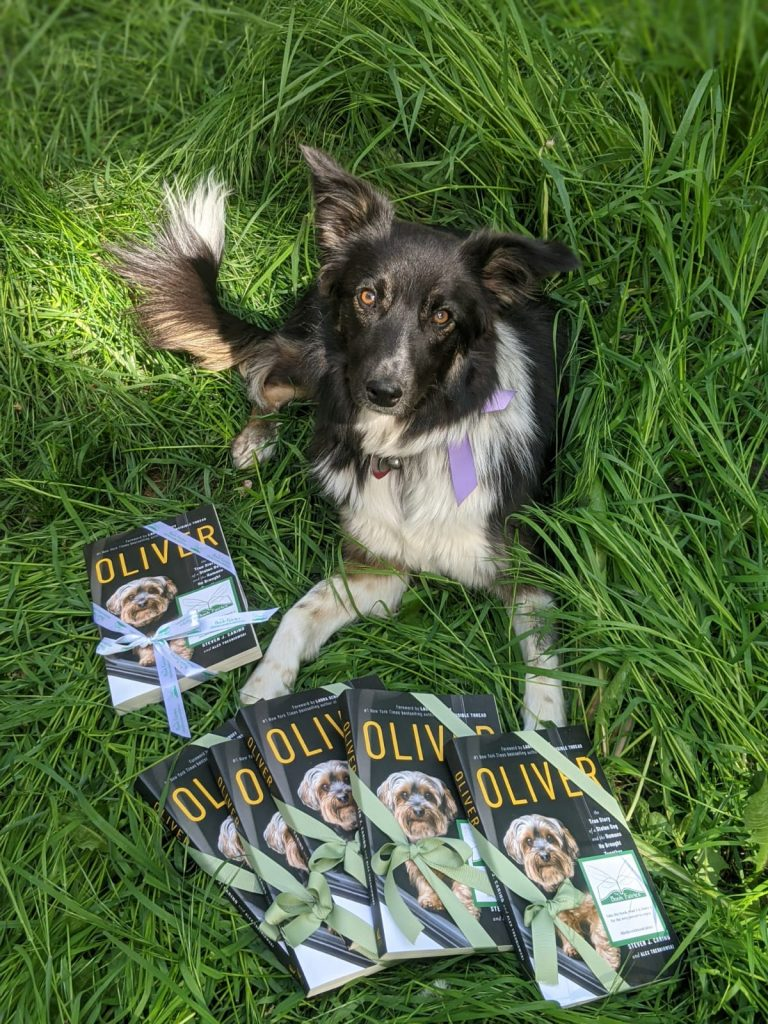 With a collie dog - Book Fairies around the states hide copies of Oliver the dog