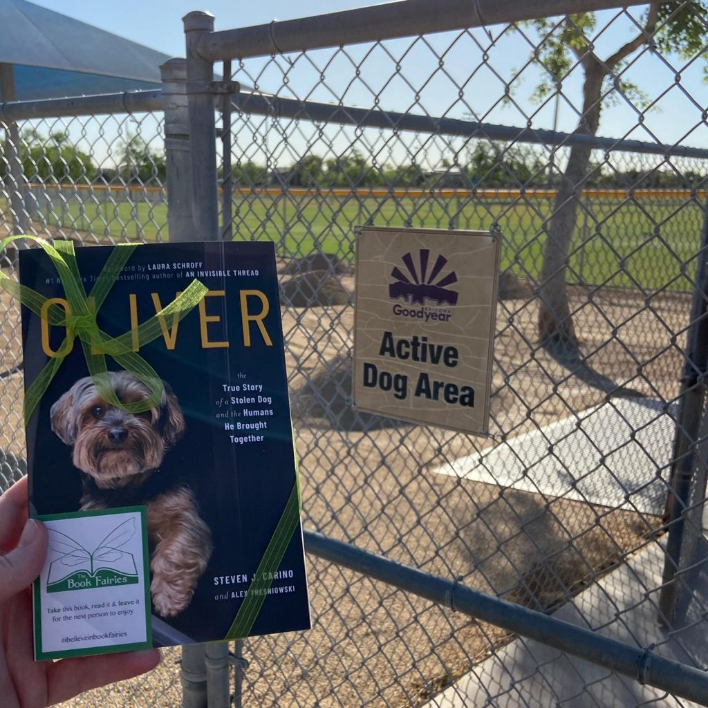 Dog park - Book Fairies around the states hide copies of Oliver the dog