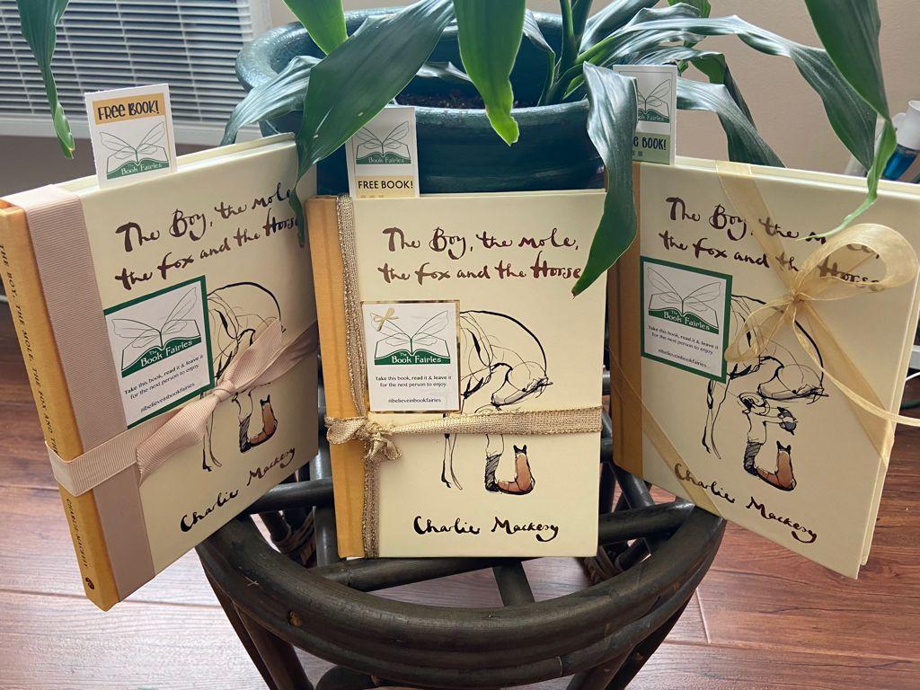 Book Fairies hide copies Charlie Mackesy The Boy The Mole The Fox and The Horse - preparing books