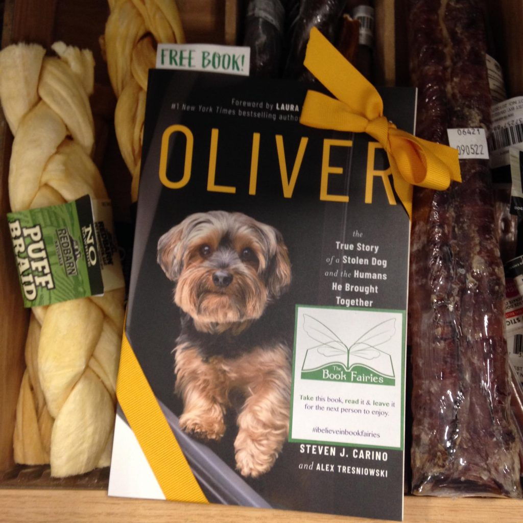 Book Fairies around the states hide copies of Oliver the dog - in a pet shop