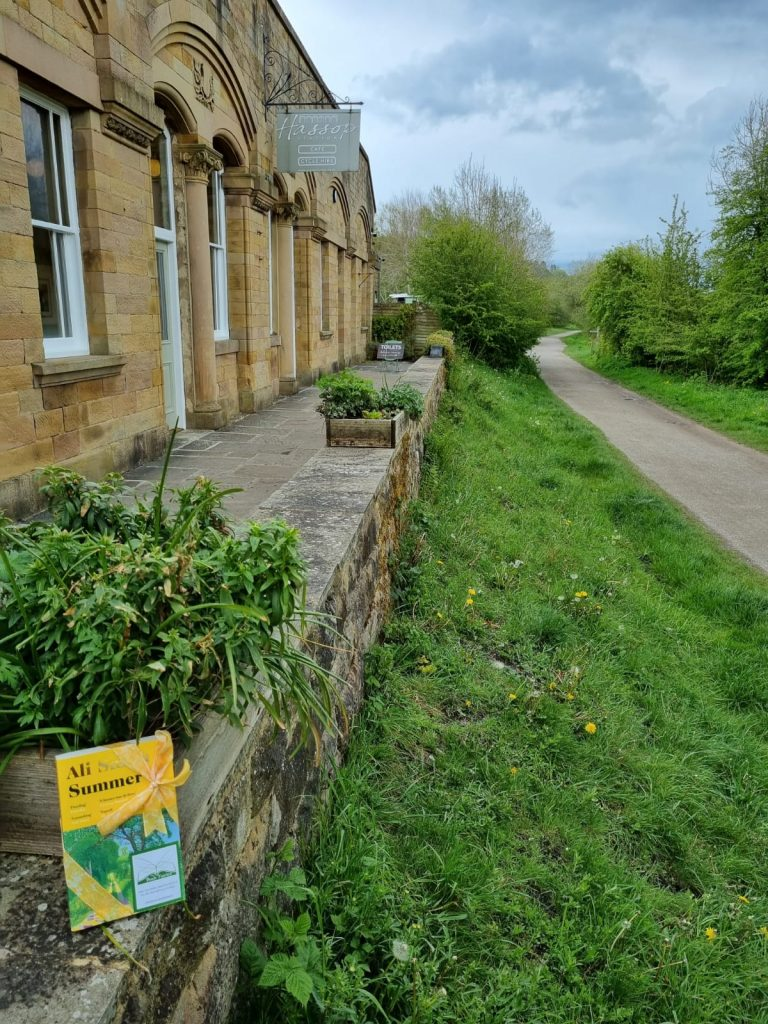Book Fairies hide copies of Summer by Ali Smith on a cycle trail