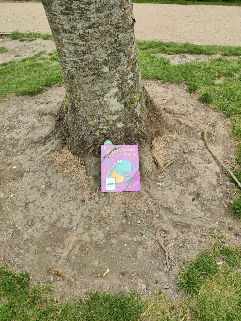 The Book Fairies in Ireland with Cruinniú na nÓg and Fingal Libraries 2