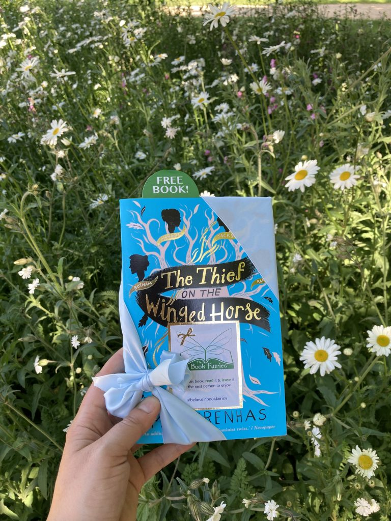 Book Fairies hide The Thief on the Winged Horse by Kate Mascarenhas in a meadow in Oxford