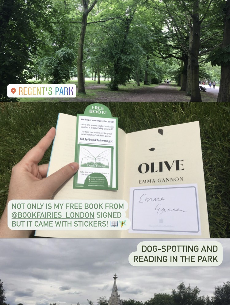 Olive by Emma Gannon hidden by UK book fairies - book found
