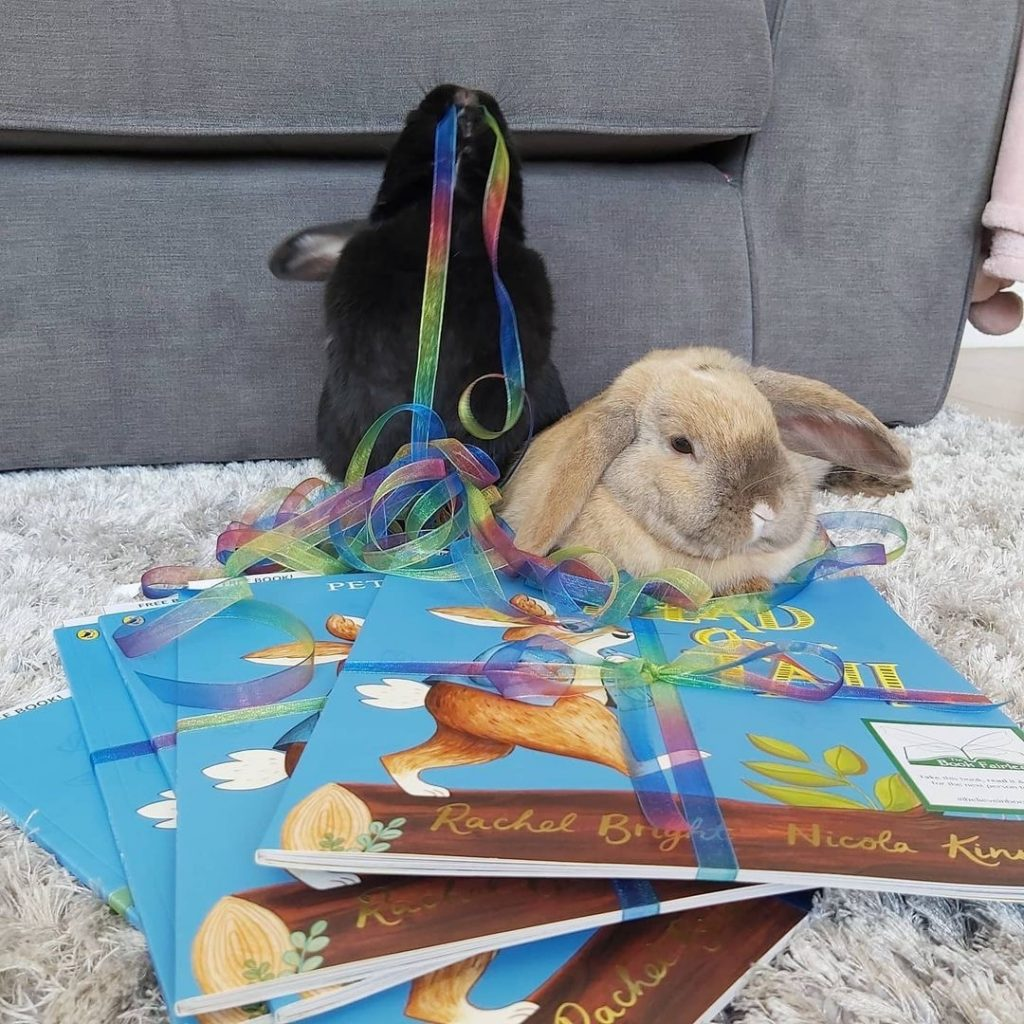 New Peter Rabbit adventure Head Over Tail shared by book fairies rabbit helping