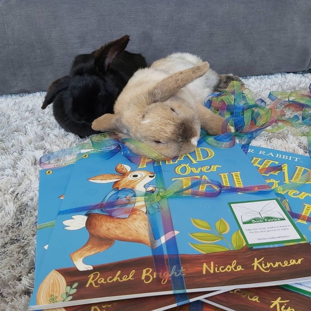 New Peter Rabbit adventure Head Over Tail shared by book fairies - rabbits