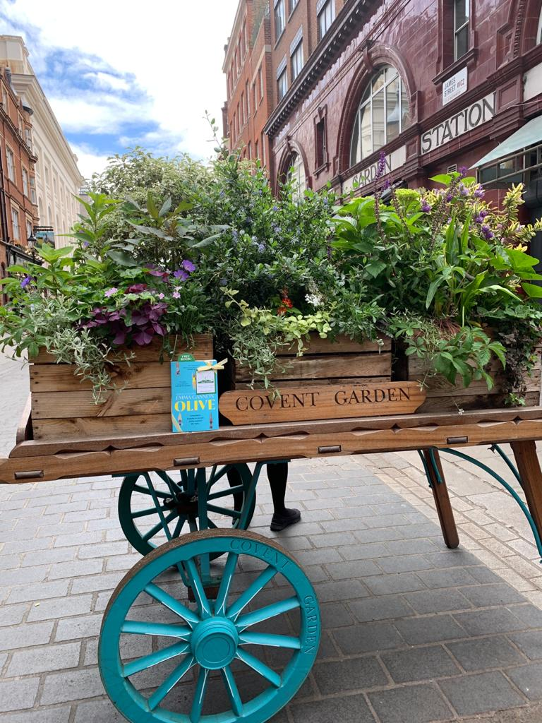 Olive by Emma Gannon hidden by UK book fairies in Covent Garden London