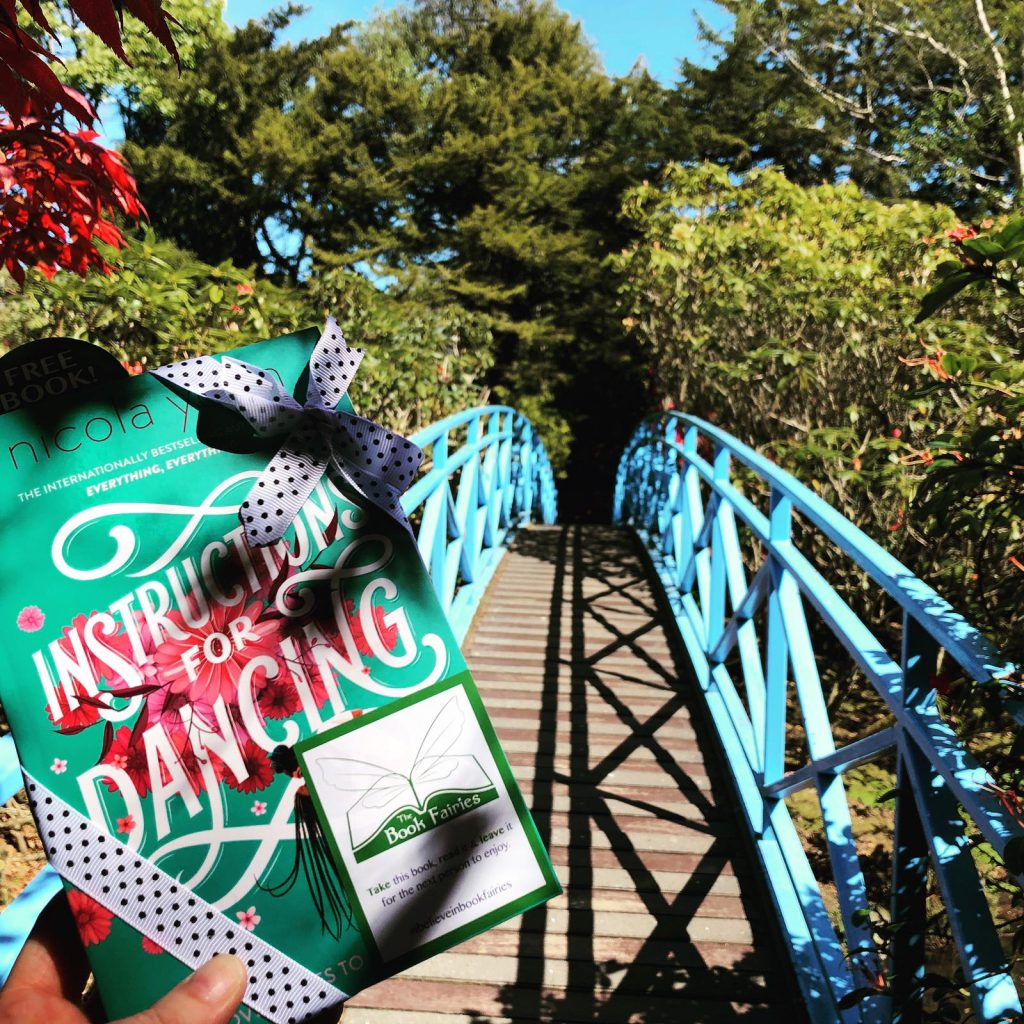 Nicola Yoon's new novel Instructions for Dancing hidden by The Book Fairies - in Aberdeen