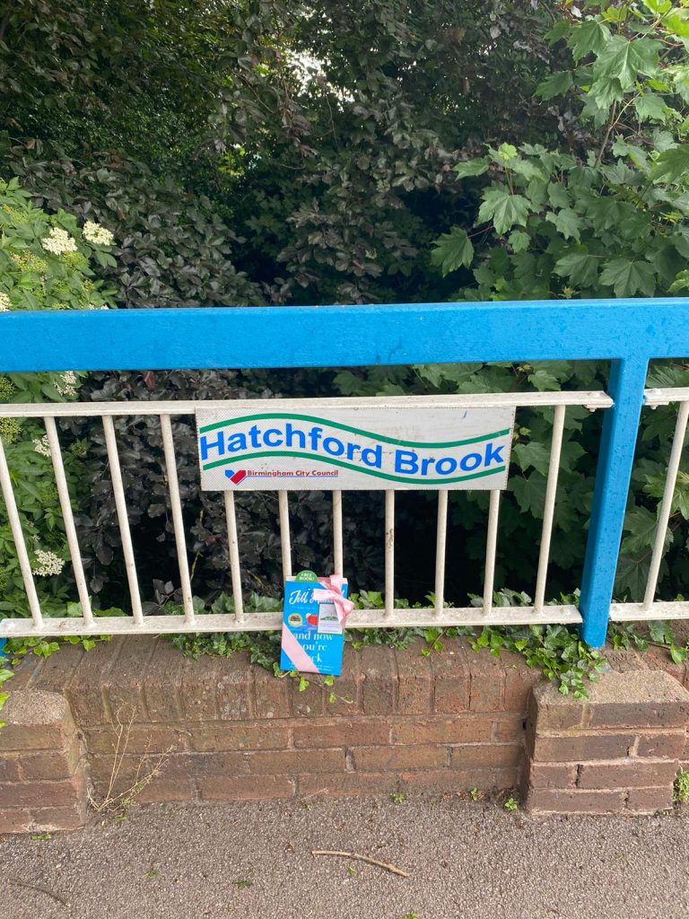 The Book Fairies and Jill Mansell share copies of And Now You're Back at Hatchford Brooke