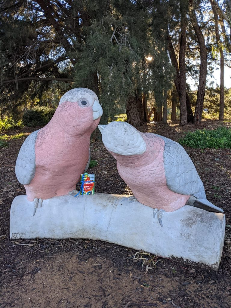 Book Fairies in Australia shared copies of The Husbands by Chandler Baker - at a statue
