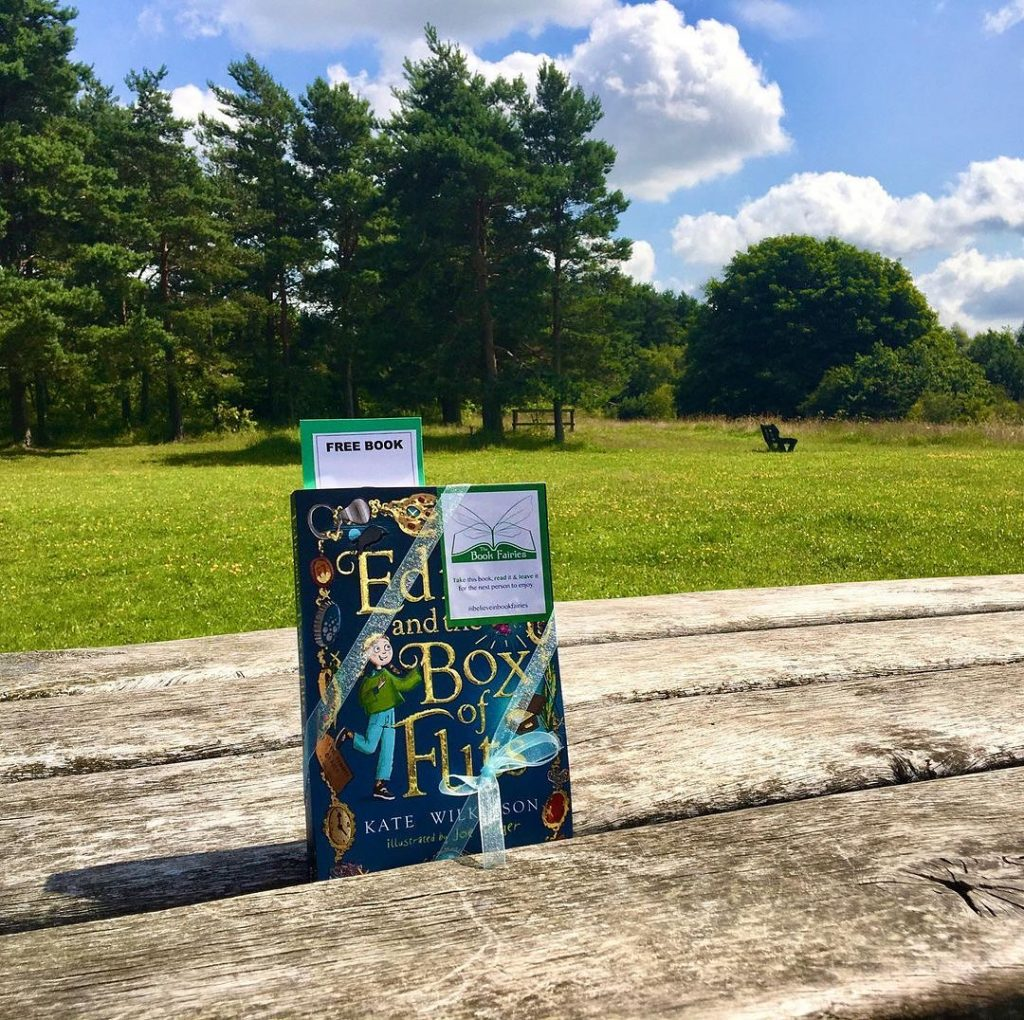 Edie and the Box of Flits hidden by The Book Fairies in a park